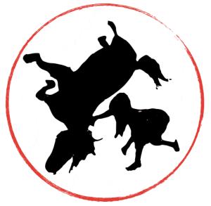 horsegirlring
